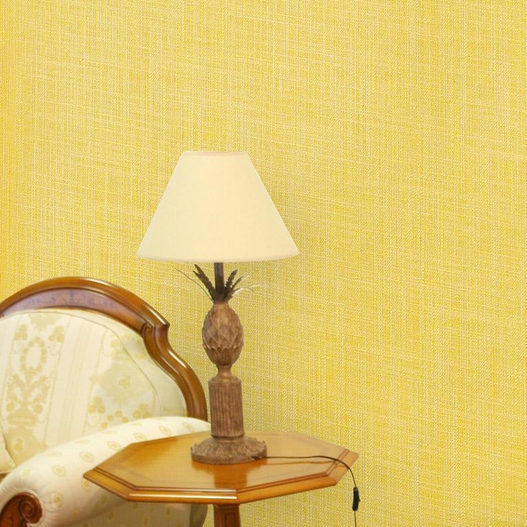 papier peint un choix de plus de 9 000 mod les papierspeintsdirect. Black Bedroom Furniture Sets. Home Design Ideas