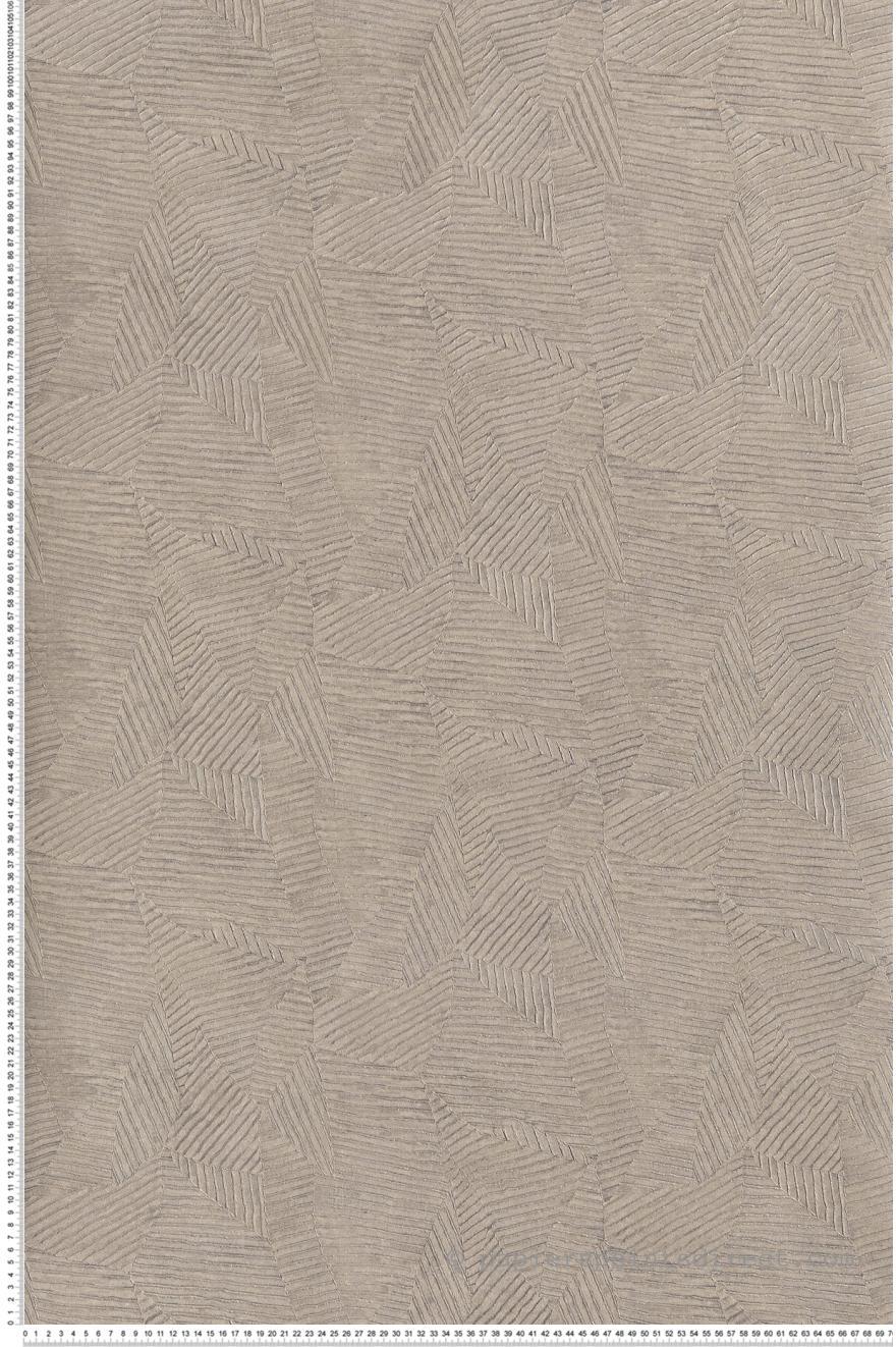 Papier Peint Calathea Feuilles Gris Perle Acajou De Casamance