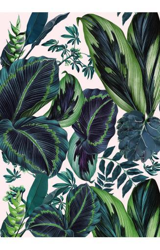 papier peint jungle et tropical avec feuilles de palm. Black Bedroom Furniture Sets. Home Design Ideas