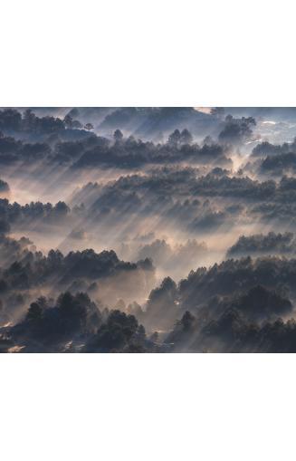 Papiers Peints Paysages Nature Et Liberte Papierspeintsdirect