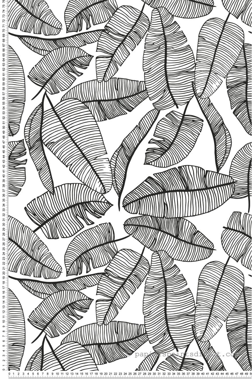 Palmes Noir Et Blanc Papier Peint De Lilipinso