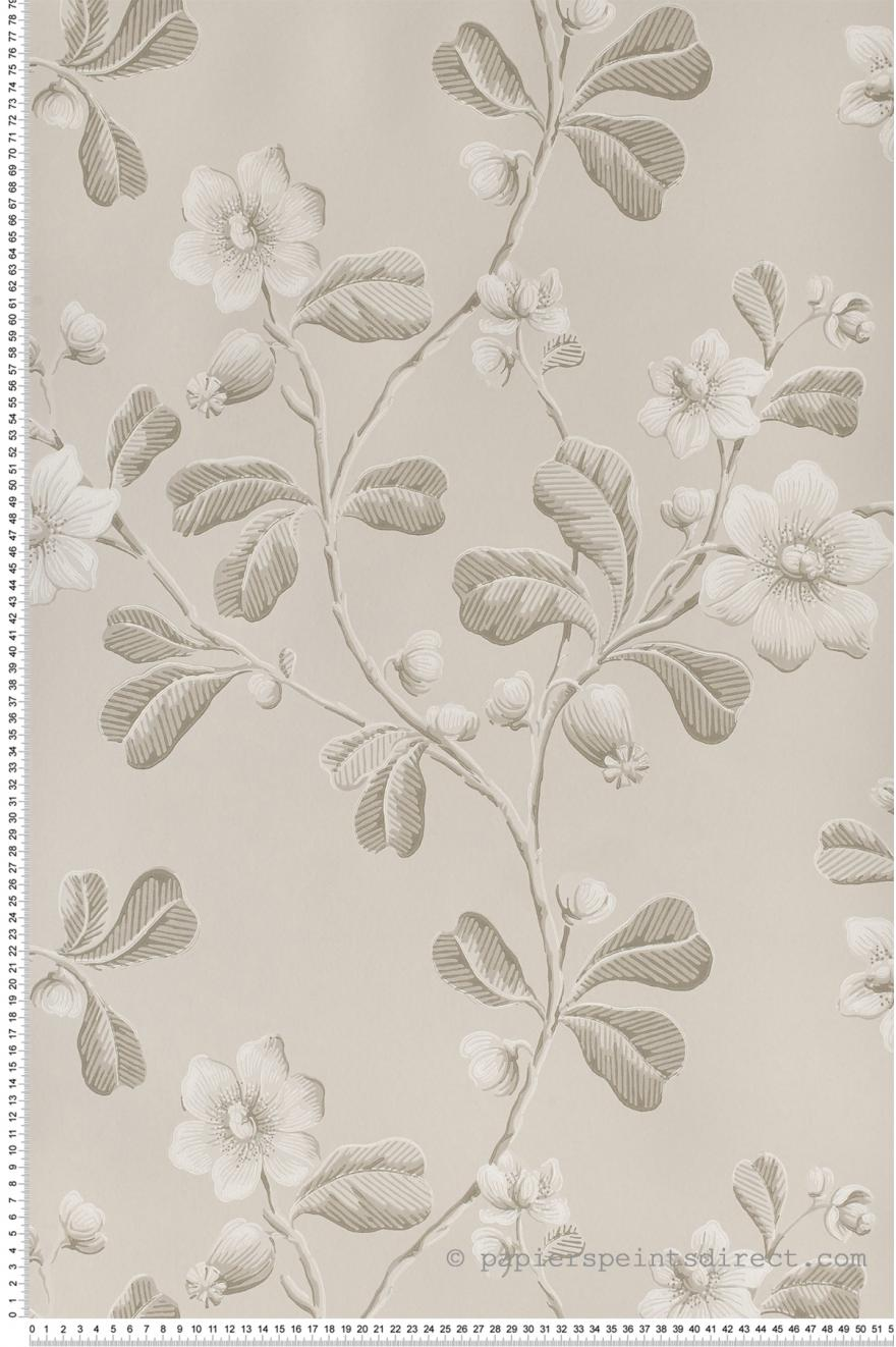 broadwick st gris papier peint london wallpapers iv de little greene. Black Bedroom Furniture Sets. Home Design Ideas