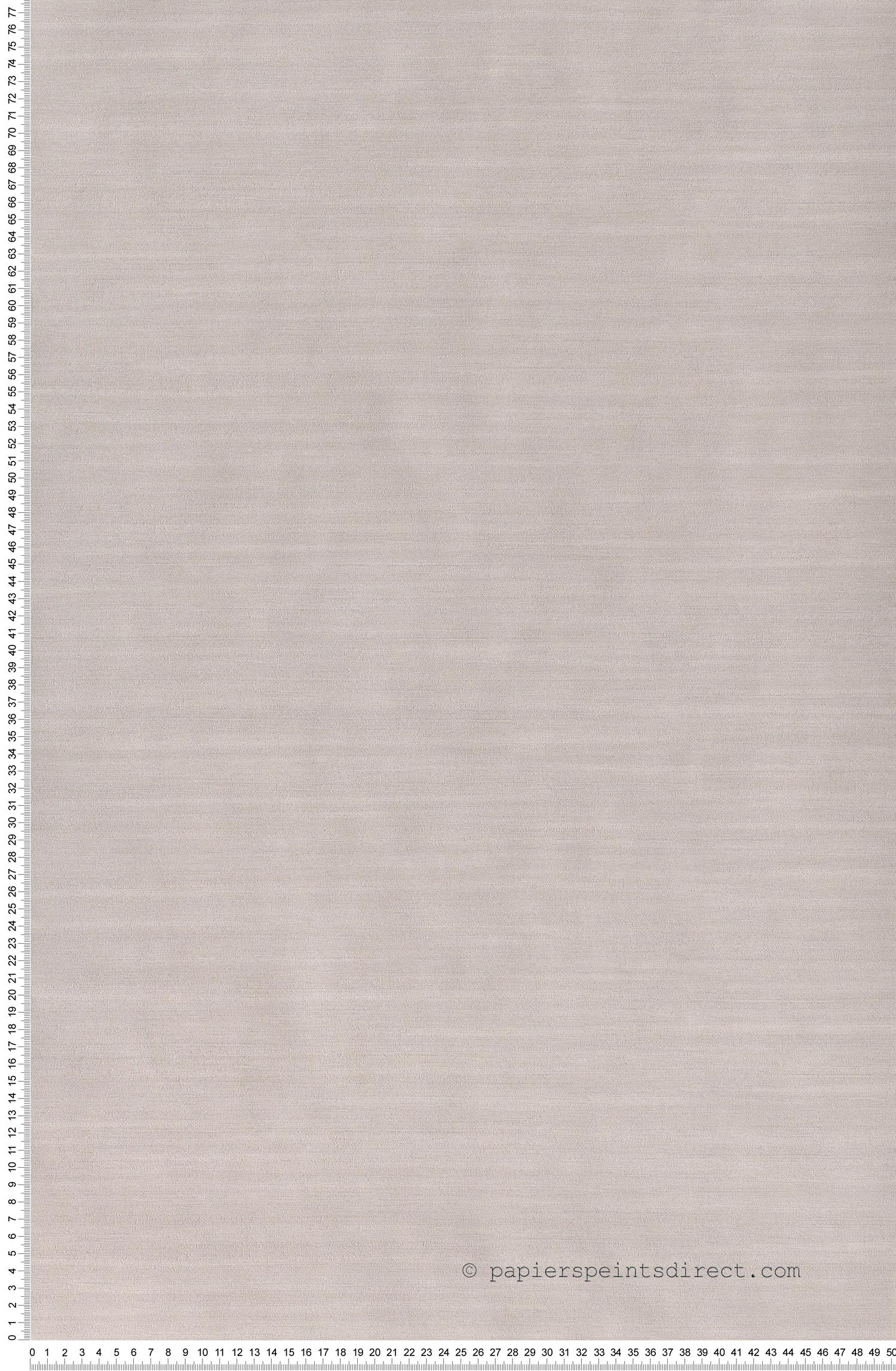 Uni gris - Papier peint 10ème Anniversaire de Casélio