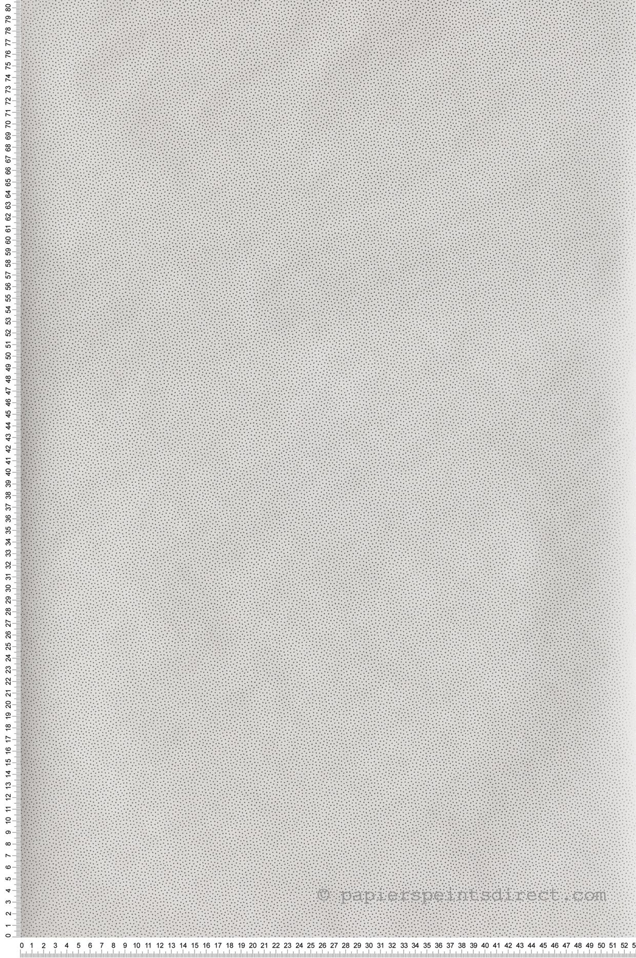 Papier peint pois Goma blanc et argent - Hygge de Casélio   HYG100400101