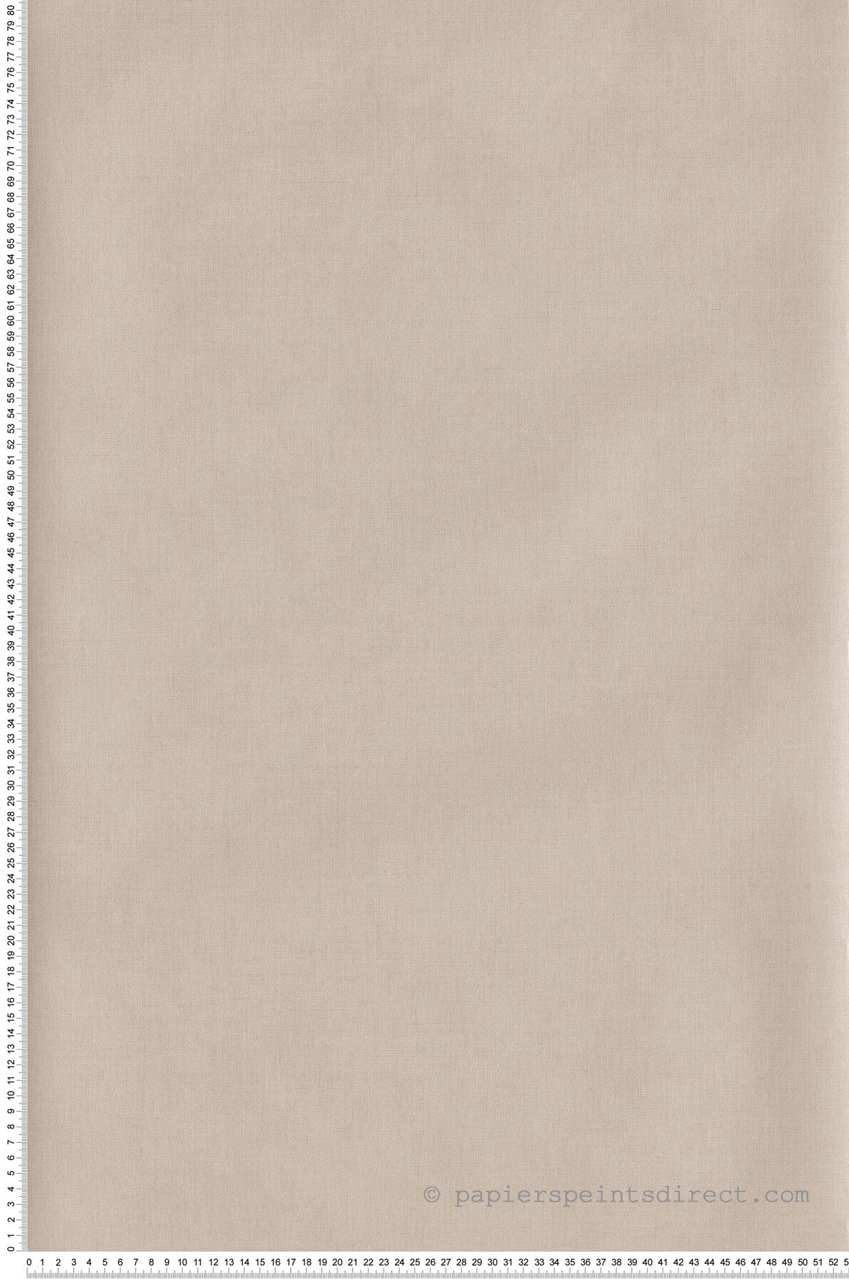 Papier peint Uni beige clair - Hygge de Casélio | HYG100601212