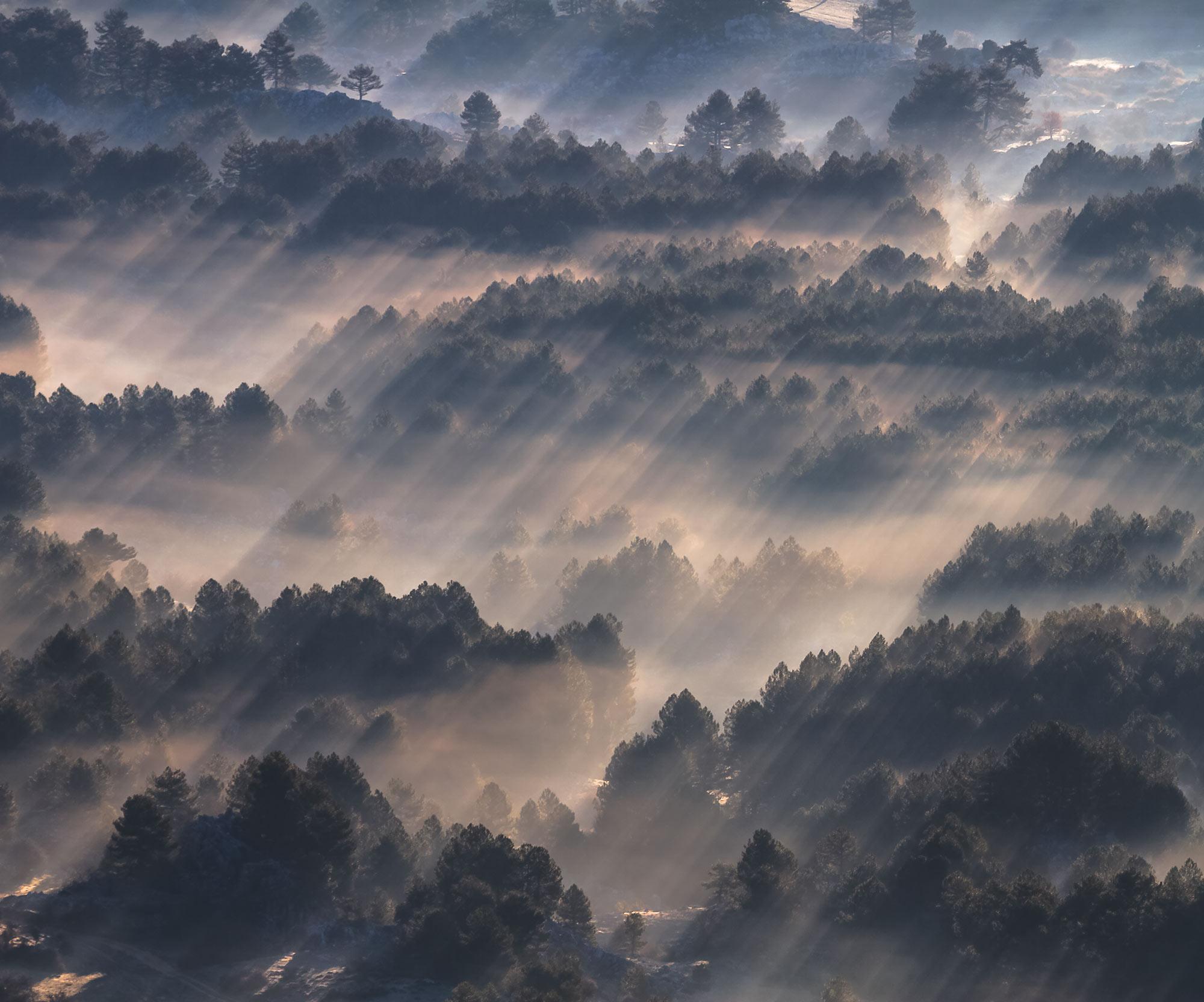 Panoramique Rays - Papier peint Komar