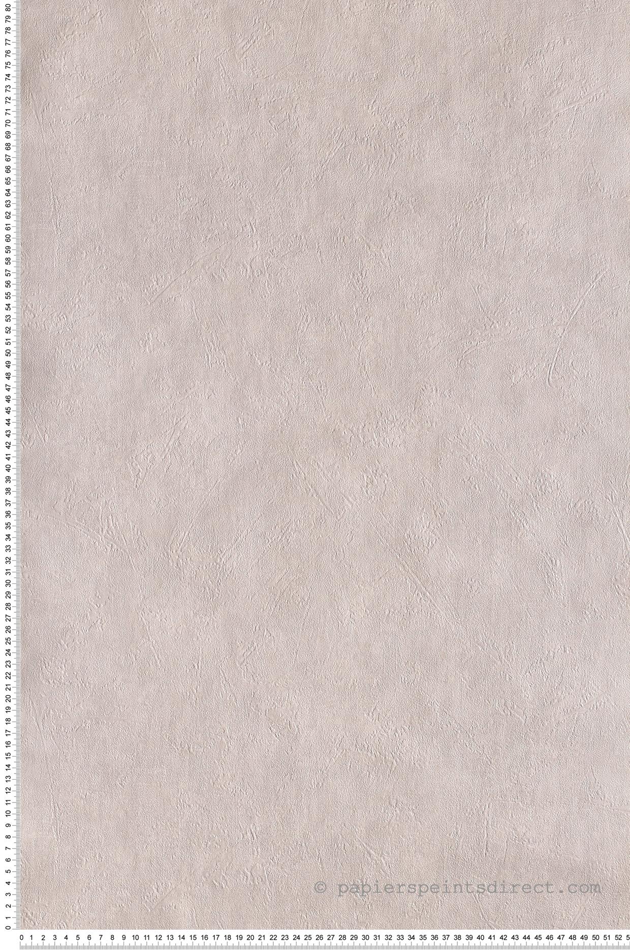 Papier Peint Uni béton gris - Les aventures de Lutèce  | Réf. LTC-11141809