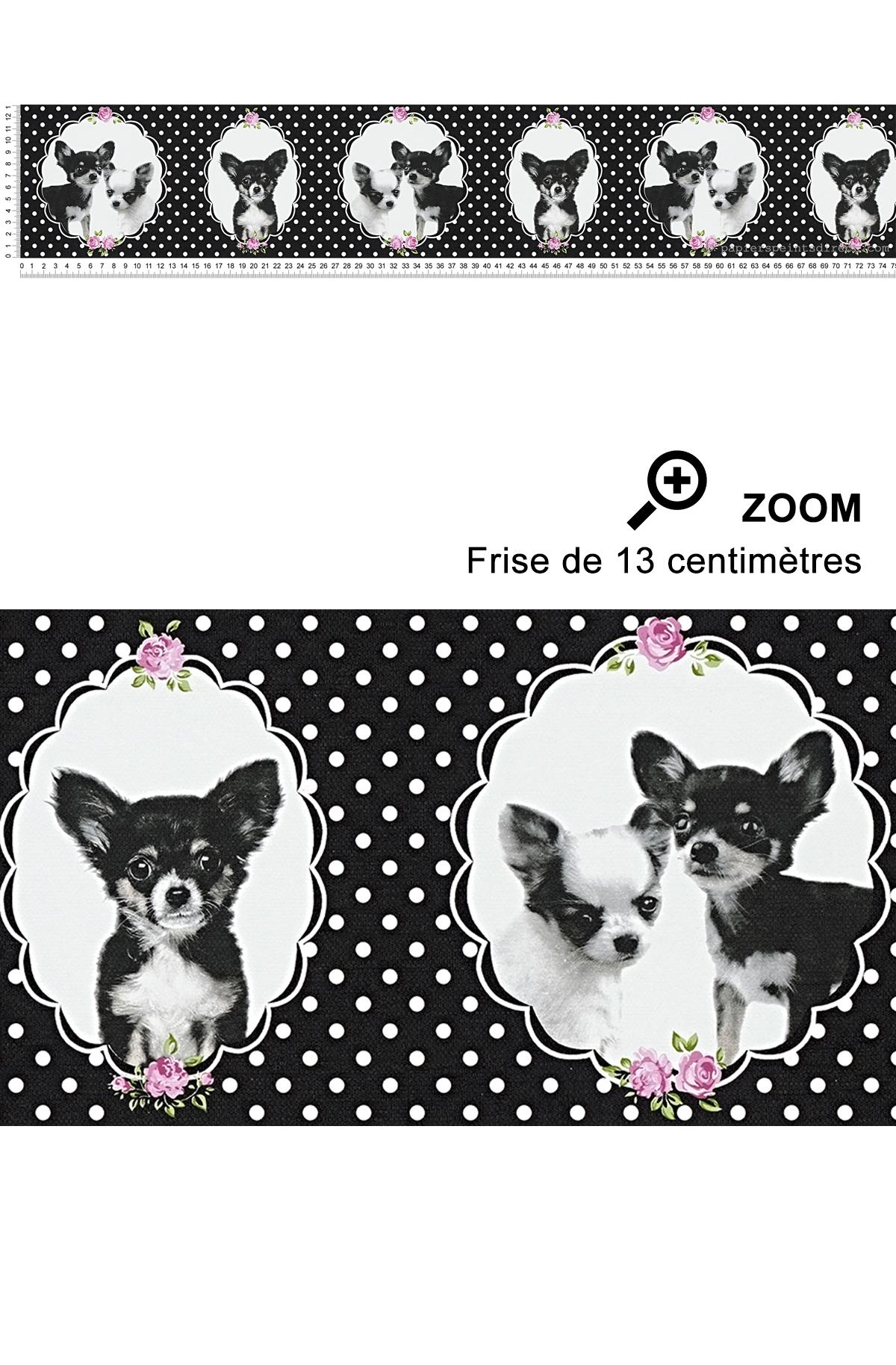 Frise chihuahua noir à pois - Little Stars AS Création | Réf. SP04407