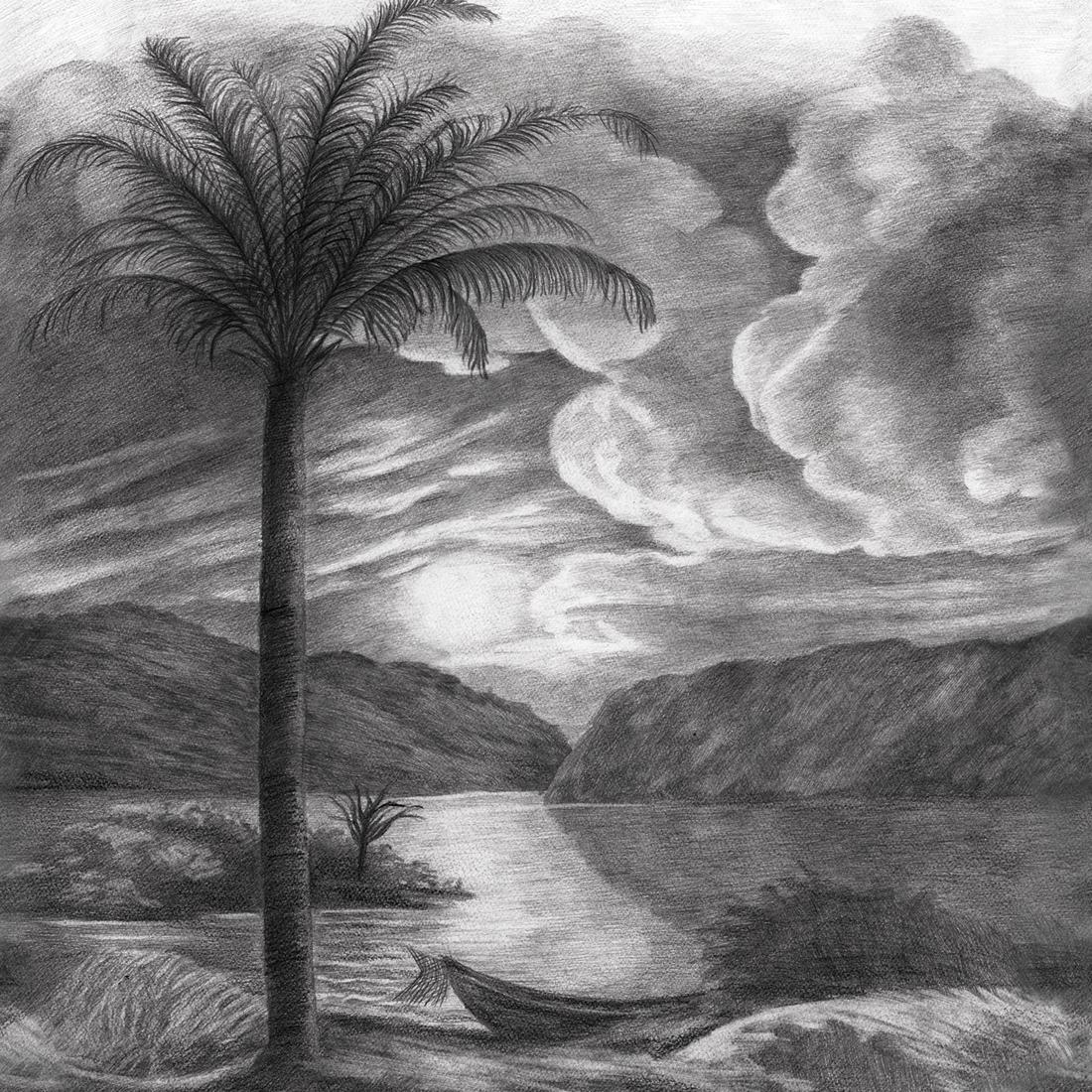 Papier Peint Panoramique Noir Et Blanc papier peint panoramique fresque palmier isola noir et blanc