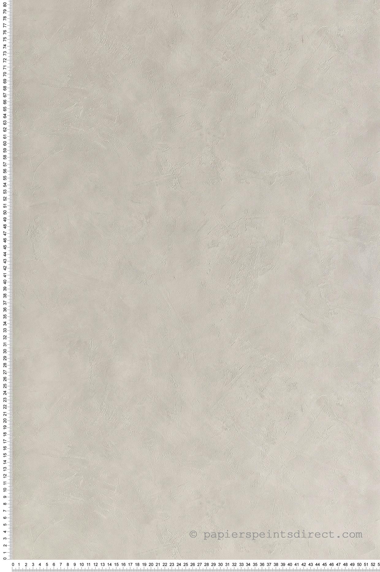 Papier peint Effet béton gris perle - Patine de Casélio | Réf. PAI100220255