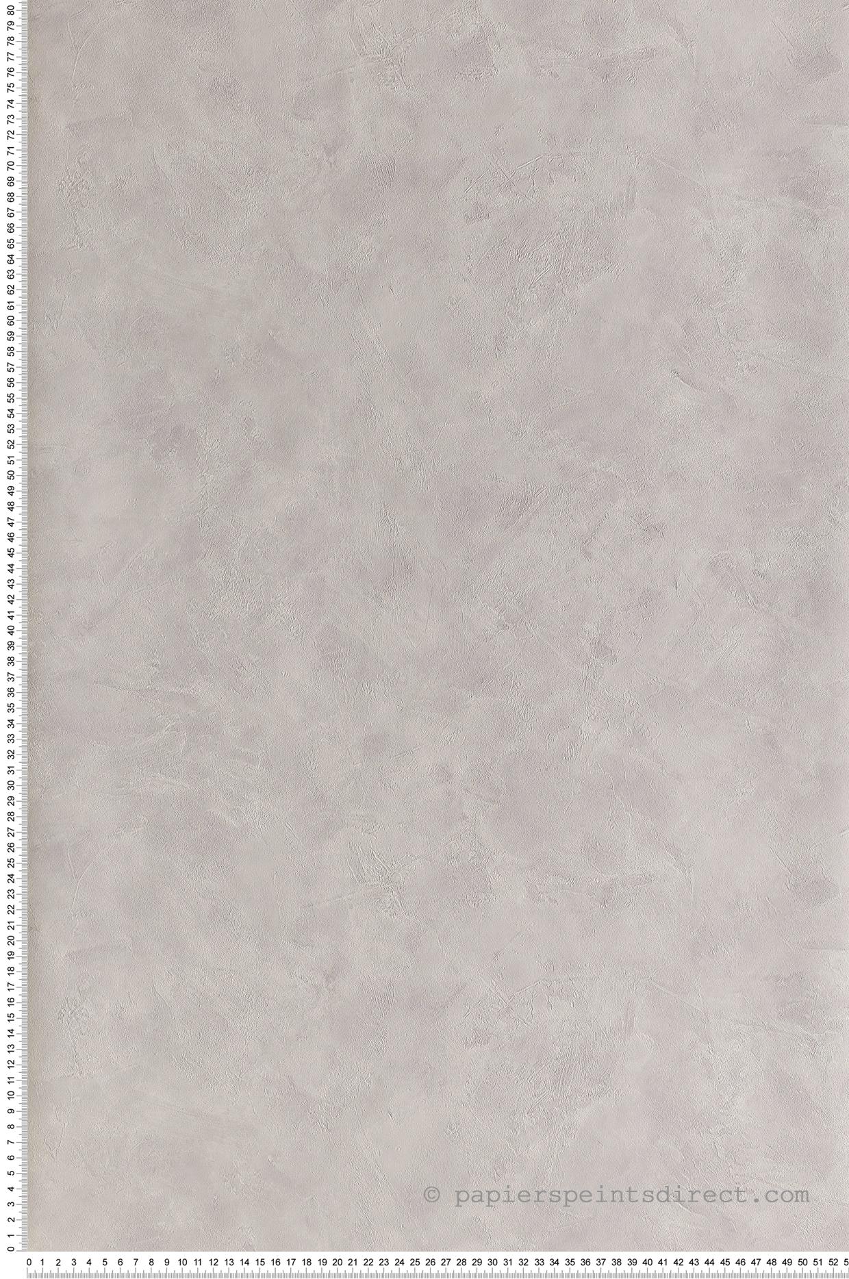 Papier peint Effet béton gris clair - Patine de Casélio   Réf. PAI100229128