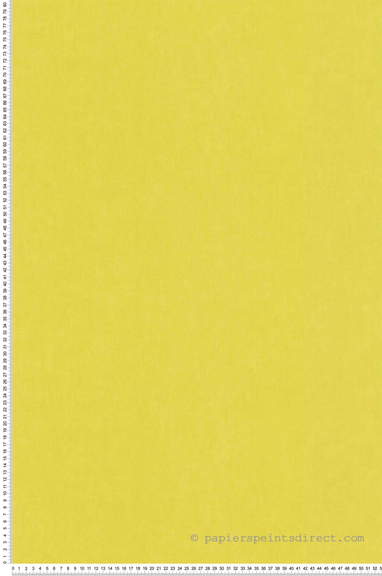 Papier Peint Uni vert anis - Les Petits Curieux de Lutèce  | Réf. LTC-11163304